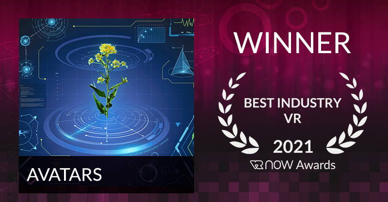 VRNow Award Certificate for AVATARS Project for the Best Industry VR submission in 2021